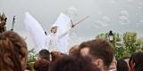 Anioły na szczudłach z ogromnymi skrzydłami, Elbląg - zdjęcie 4
