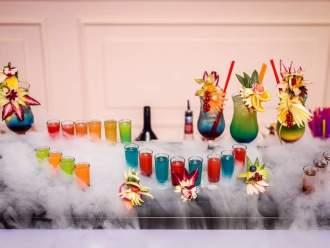 AlkoWyspa- barman na Twoje wesele! Bar mobilny-imprezy okolicznościowe, Barman na wesele Łosice