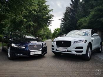 Jaguarem Do Ślubu - Wynajem Samochodów Luksusowych JAGUAR F-PACE, XF, Samochód, auto do ślubu, limuzyna Koluszki