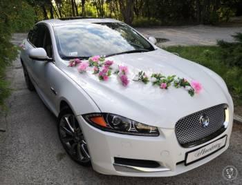Jaguar xf luxury auto do ślubu, Samochód, auto do ślubu, limuzyna Ostrów Lubelski