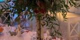 MforMatild Weddings - wyjątkowa oprawa wyjątkowego dnia, Czeladź - zdjęcie 5