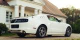 Perłowy Ford Mustang, Ozorków - zdjęcie 2