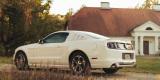 Perłowy Ford Mustang, Ozorków - zdjęcie 6