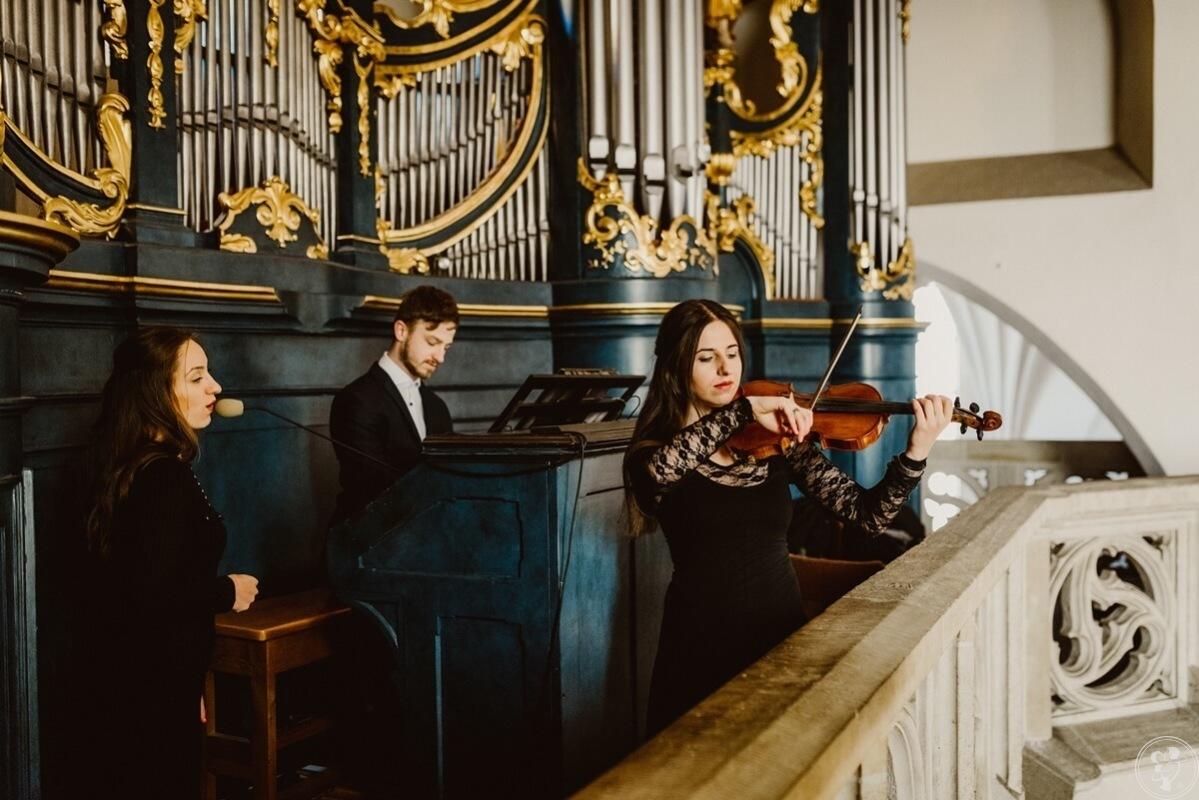 Suerte - muzyka na ślubie na najwyższym poziomie, Radom - zdjęcie 1