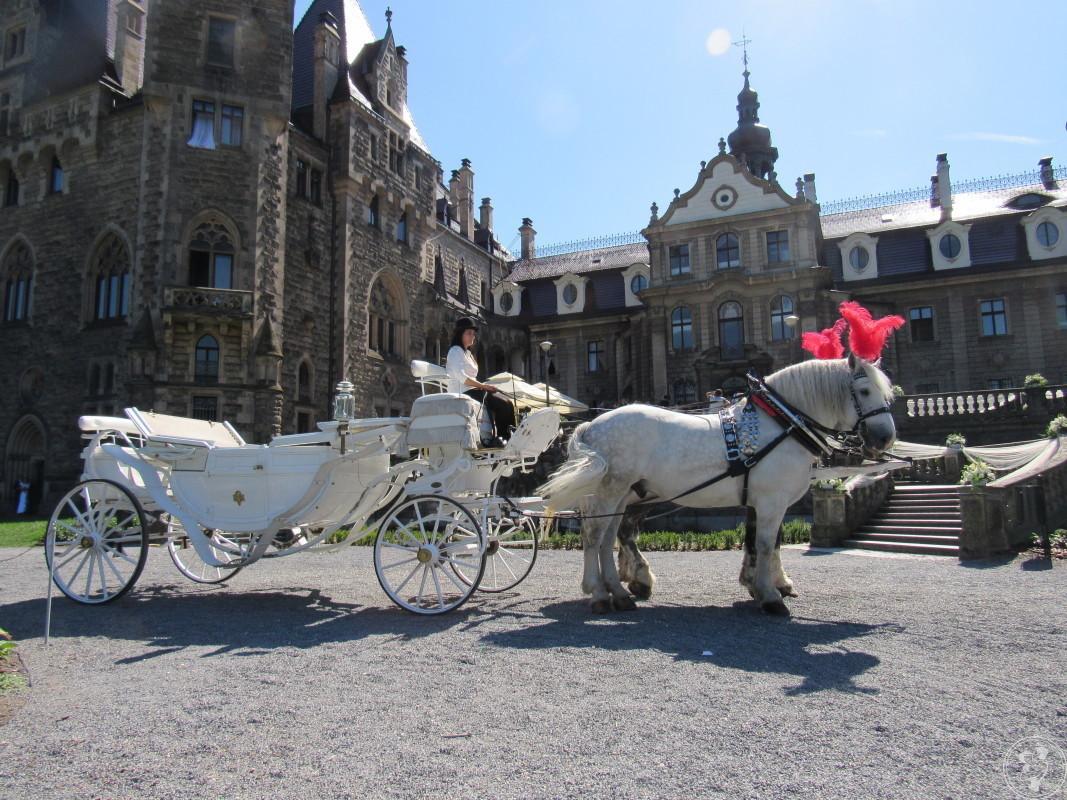 Białym powozem do Ślubu, Andrychów - zdjęcie 1