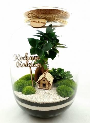 MikroKlimat - Las w słoiku. Podziękowania dla rodziców + GRATIS., Prezenty ślubne Brzesko