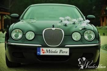 Auto do ślubu, samochód na wesele Jaguar S-Type, Samochód, auto do ślubu, limuzyna Głogówek
