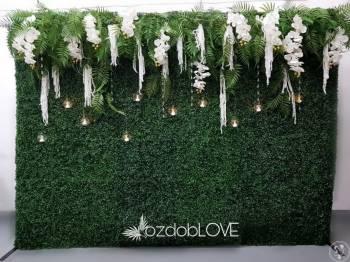 tło za Młodą Parą - ścianki kwiatowe, bukszpanowe,  napis MIŁOŚĆ, Dekoracje ślubne Poniatowa