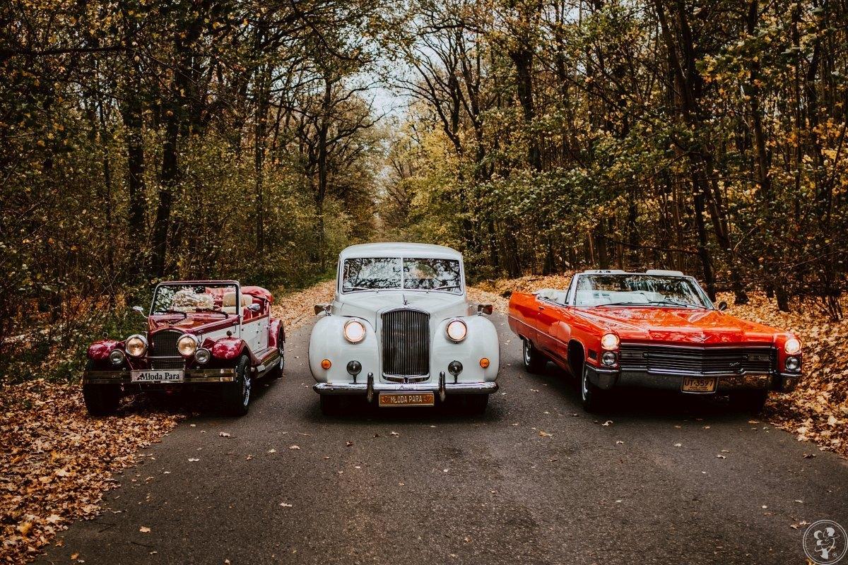 Auto do ślubu, Limuzyna na wynajem, Austin Princess, Cadillac, Nestor, Dawidy Bankowe - zdjęcie 1