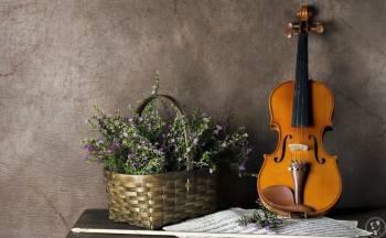 oprawa muzyczna ślubu, zapisy na 2020, skrzypce, skrzypaczka, śpiew, Oprawa muzyczna ślubu Hajnówka