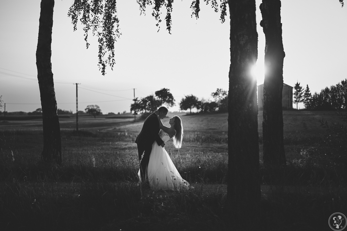 AleStudio - Film Ślubny, Suwałki - zdjęcie 1