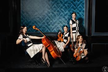 Vinyl String Quartet - kwartet smyczkowy., Oprawa muzyczna ślubu Serock