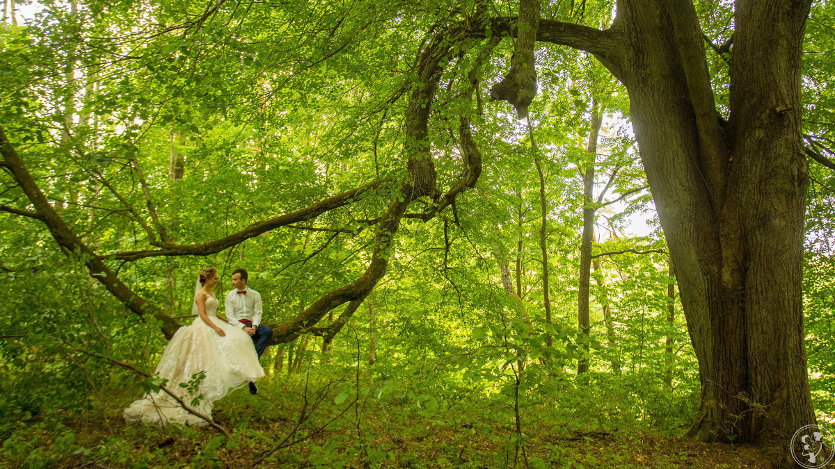 Filmowanie wesela - plener ślubny - Studio Foto Video 4K, Słupsk - zdjęcie 1