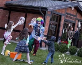 Klaun Animator - wodzirej na weselach, żongler, Animatorzy dla dzieci Tomaszów Lubelski