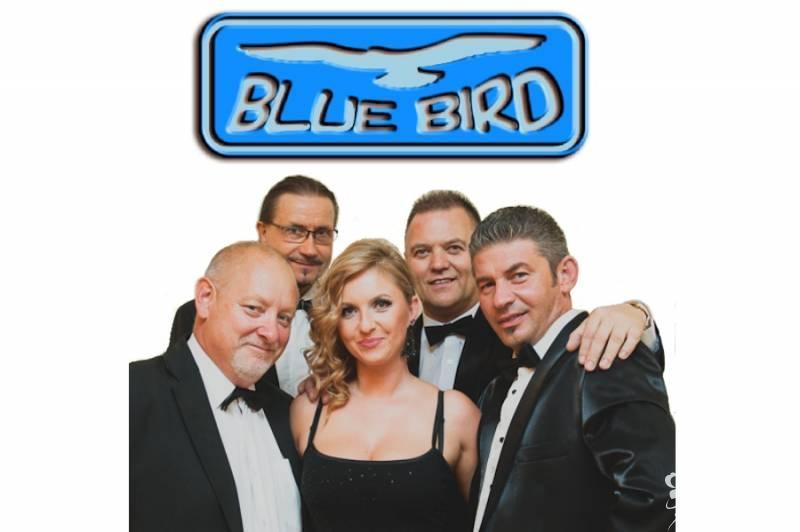 Zespół Muzyczny BLUE BIRD, Bydgoszcz - zdjęcie 1