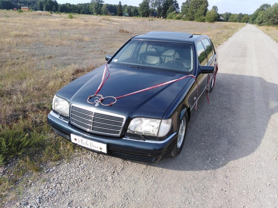 Eleganckie, klasyczne Mercedesy do ślubu! Wolne Terminy 2020, Łódź - zdjęcie 1