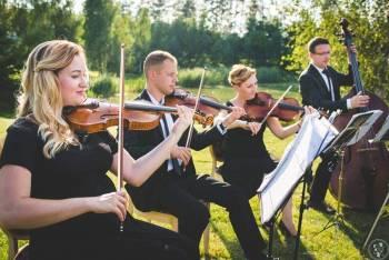 Kwartet Smyczkowy Primavera ?Oprawa muzyczna ślubu? eventy? koncert, Oprawa muzyczna ślubu Hajnówka