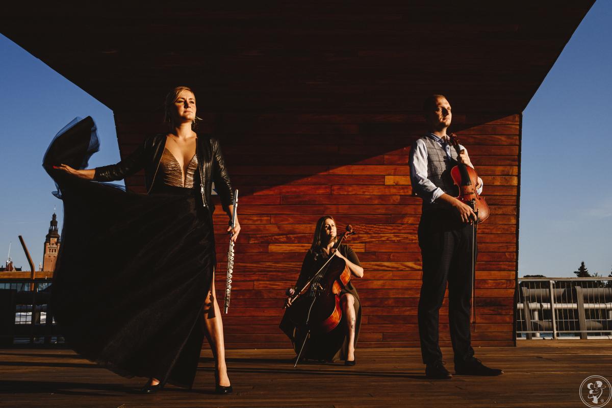 TRIO CON FETTI - muzyka z klasą, Szczecin - zdjęcie 1
