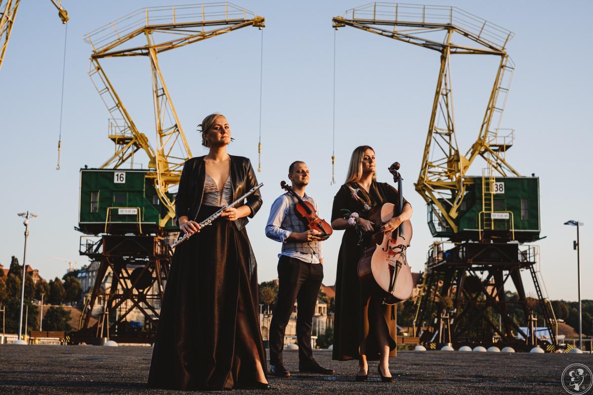 Grodzka Agencja Artystyczna - oprawa muzyczna ślubu  - duży wybór, Szczecin - zdjęcie 1
