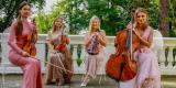 Love and Music-najpiękniejsza muzyka na ślub KWARTET SMYCZKOWY , HARFA, Warszawa - zdjęcie 2