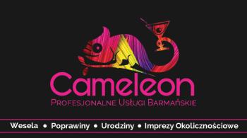 Drink Bar Cameleon, Barman na wesele Brok
