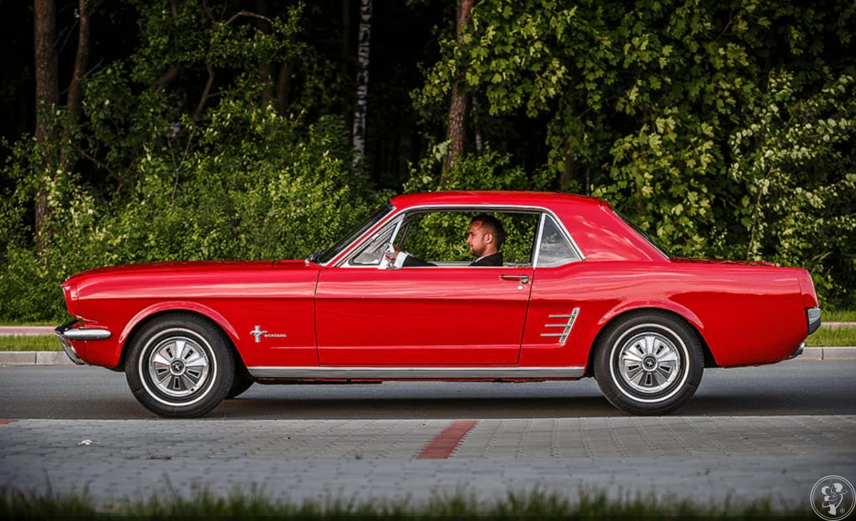 Ford Mustang Cabrio 1966, samochód do wynajęcia, Kolbuszowa - zdjęcie 1