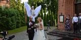 Anioły na szczudłach z ogromnymi skrzydłami, Elbląg - zdjęcie 5