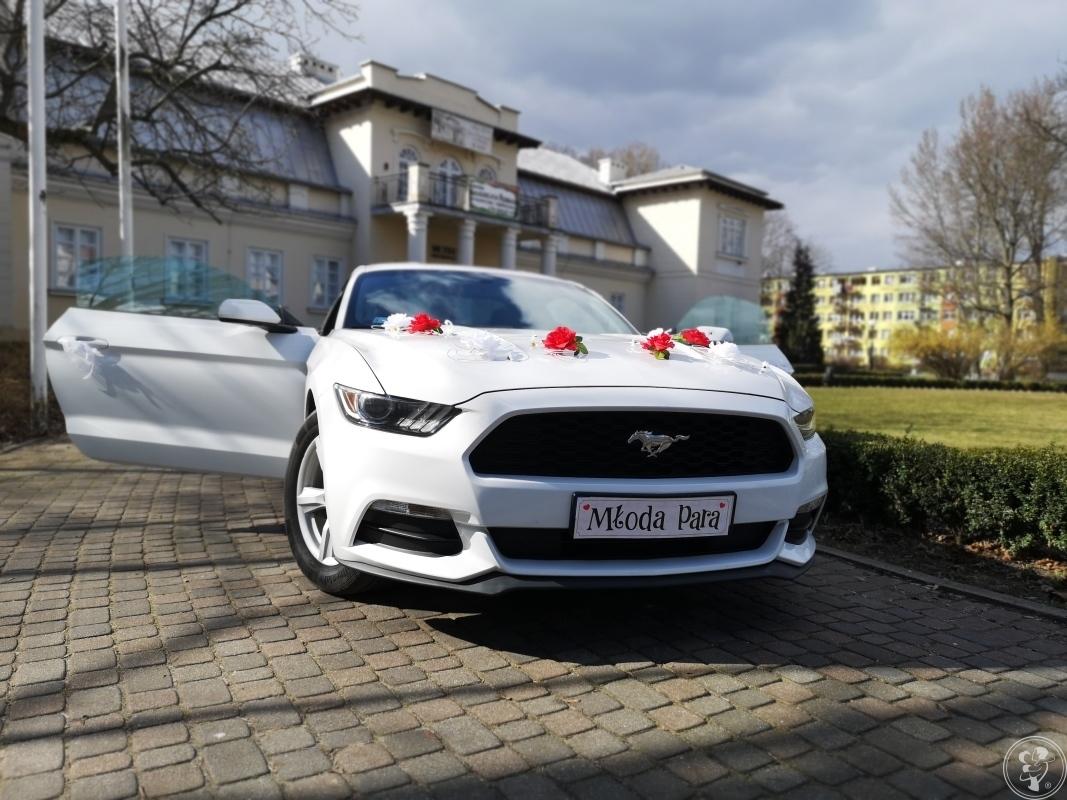 Ford Mustang VI  do ślubu, Łódź - zdjęcie 1