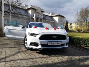 Ford Mustang VI  do ślubu, Samochód, auto do ślubu, limuzyna Biała Rawska