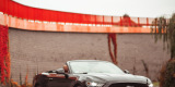 Ford Mustang Cabrio do ślubu. Sam lub z kierowcą!, Gdańsk - zdjęcie 1