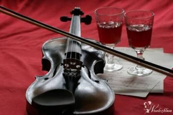 Skrzypce śpiew wiolonczela na Twoim ślubie!, Oprawa muzyczna ślubu Łomianki