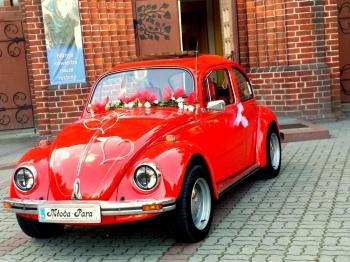 Auto do ślubu VW GARBUS imprezy,urodziny,sesje zdjeciowe, Samochód, auto do ślubu, limuzyna Mogilno