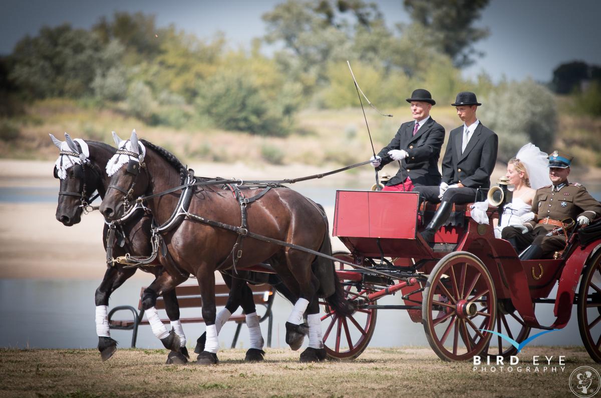 Powóz ślubny, Grudziądz - zdjęcie 1