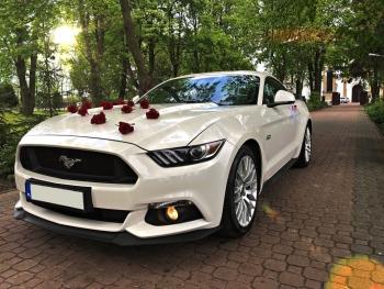 MUSTANG GT, BMW, CHRYSLER, MERCEDES | First Class Rental, Samochód, auto do ślubu, limuzyna Lubartów