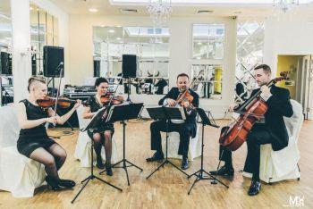 Kwartet smyczkowy INSANO, oferta oprawy muzycznej, Oprawa muzyczna ślubu Tłuszcz