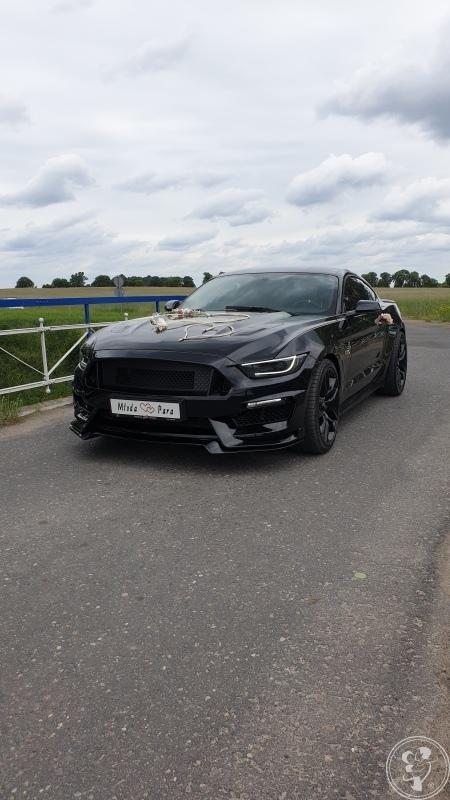 MUSTANG GT 5.0 V8 480KM !!, Poznań - zdjęcie 1