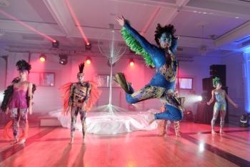 Pokazy artystyczne, Pokaz tańca na weselu Koluszki