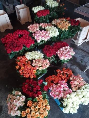 Gospodarstwo Ogrodnicze Czajowscy, Kwiaciarnia, bukiety ślubne Brzezie