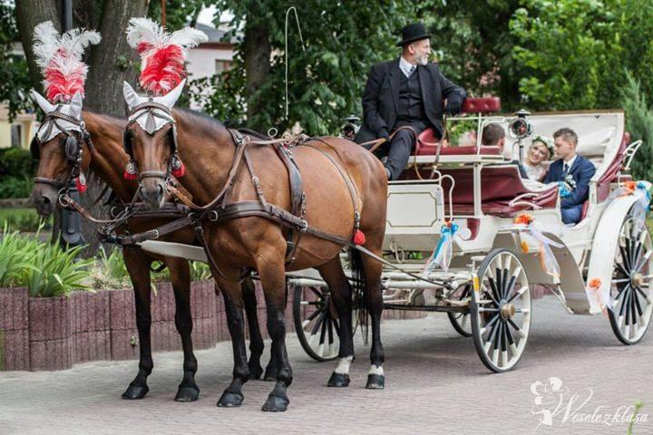 Karetą do ślubu, Tuliszków - zdjęcie 1