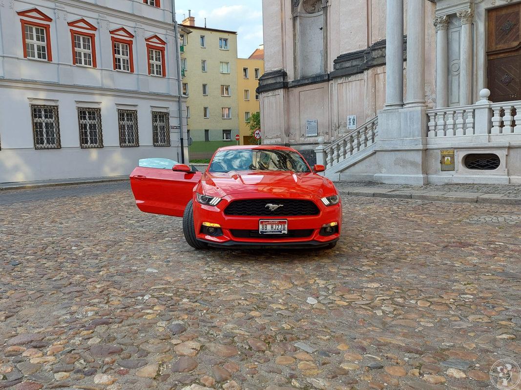 Ford Mustang do Ślubu, Nysa - zdjęcie 1