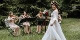 Love and Music-najpiękniejsza muzyka na ślub KWARTET SMYCZKOWY , HARFA, Warszawa - zdjęcie 3
