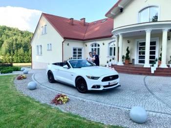 Auto do ślubu MUSTANG GT V8 cabrio AUDI A6, Samochód, auto do ślubu, limuzyna Tyczyn