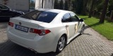 Auto do ślubu - Honda Accord VIII type S   biała perła, Jasło - zdjęcie 3