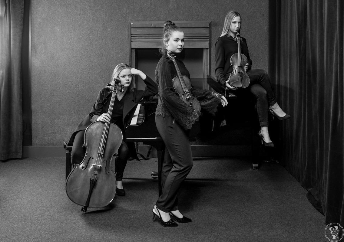 Appassionato - trio smyczkowe, Tarnów - zdjęcie 1