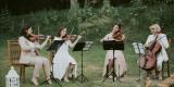 WASI MUZYCY - śpiew-skrzypce-wiolonczela-KWARTET-harfa-organy-pianino, Łódź - zdjęcie 2