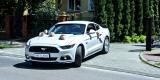 FORD MUSTANG GT, BMW, CHRYSLER, MERCEDES   First Class Rental, Lublin - zdjęcie 5