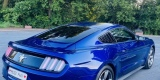 Najlepsze Auto o Ślubu ♥️👰🏼🤵🏼Piękne brzmienie   Ford Mustang, Bydgoszcz - zdjęcie 3