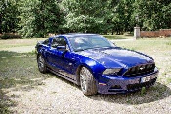 Mustangiem GT do ślubu! 5 litrowy silnik i niesamowity kolor auta!, Samochód, auto do ślubu, limuzyna Luboń