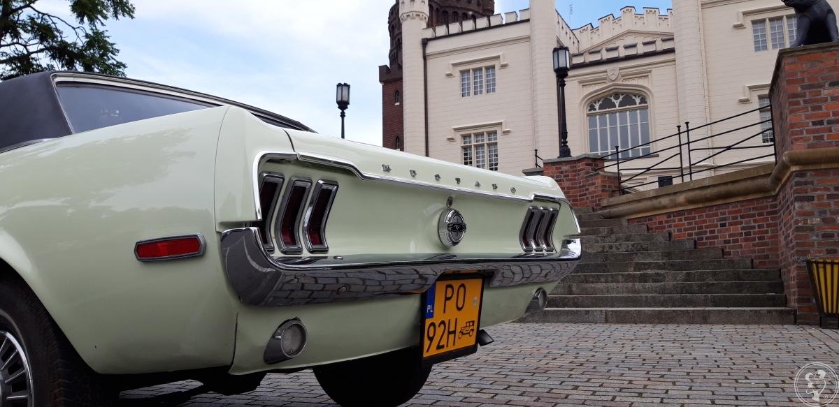 Mustang do ślubu | sam prowadzisz | kremowo-zielony | dużo terminów, Poznań - zdjęcie 1