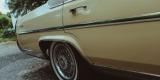 Cadillac Fleetwood - wyjątkowe auto do ślubu, Bytom - zdjęcie 4